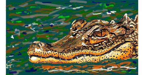 Alligator drawing by Sam