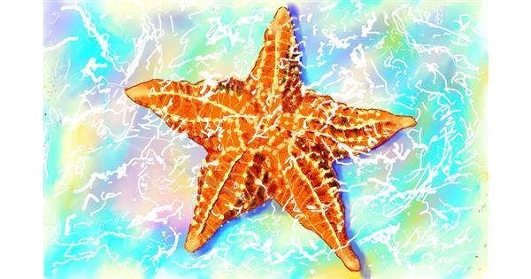 Starfish drawing by GJP
