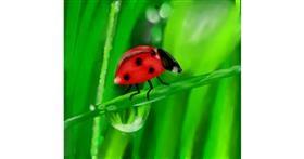 Ladybug drawing by Champakali