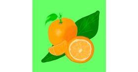 Drawing of Orange by MaRi