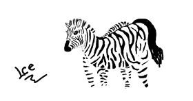 Zebra drawing by IceSleep