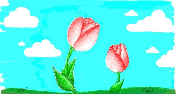 Tulips drawing by smol