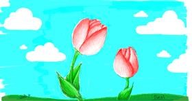 Drawing of Tulips by smol