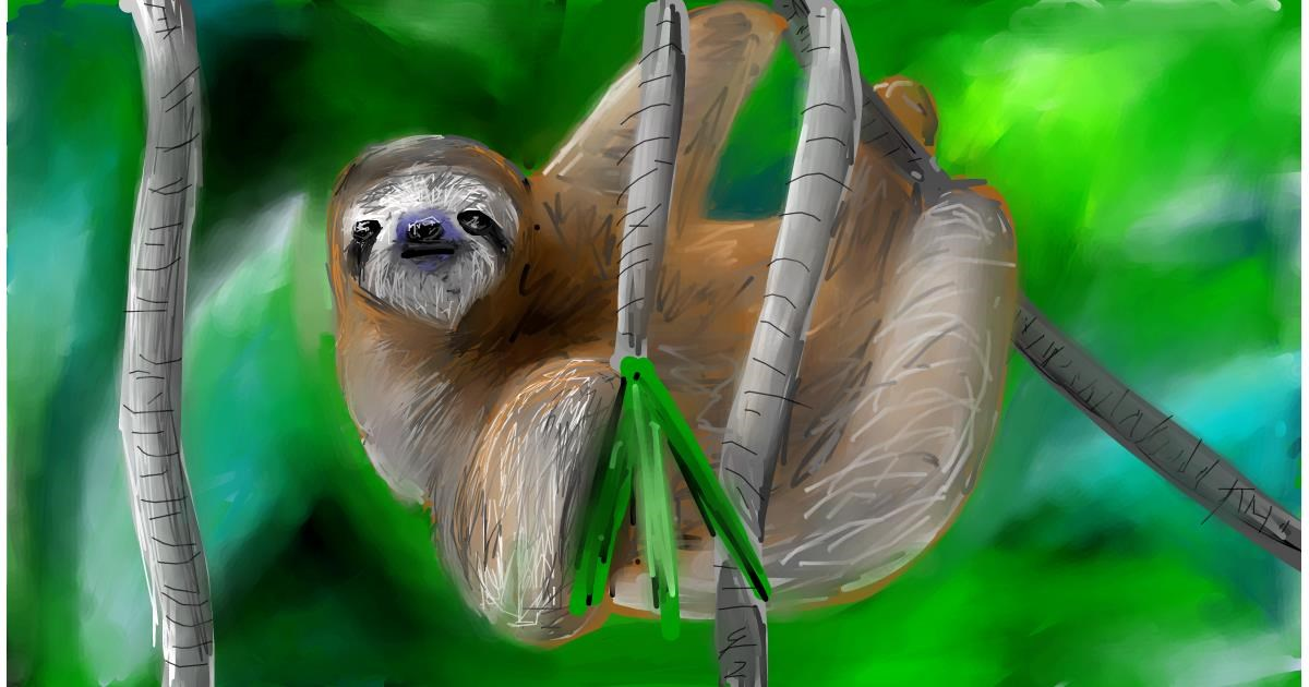 Drawing of Sloth by Soaring Sunshine