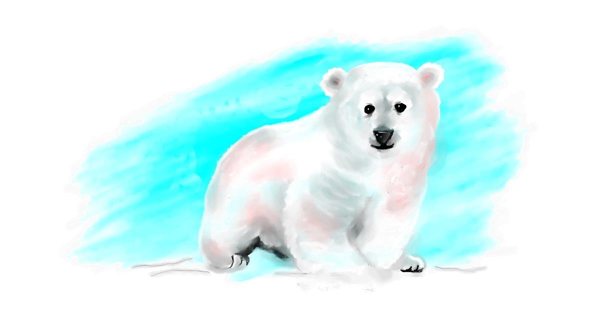 Drawing of Polar Bear by Debidolittle
