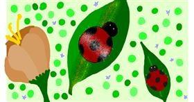 Ladybug drawing by 𝓟𝓮𝓰𝓰𝔂_52