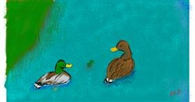 Duck drawing by Obnoxious But Consistent