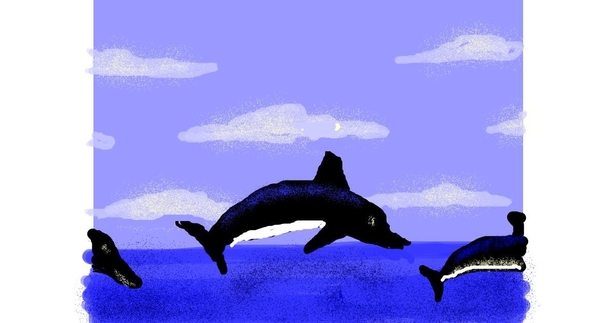 Dolphin drawing by Anonymous