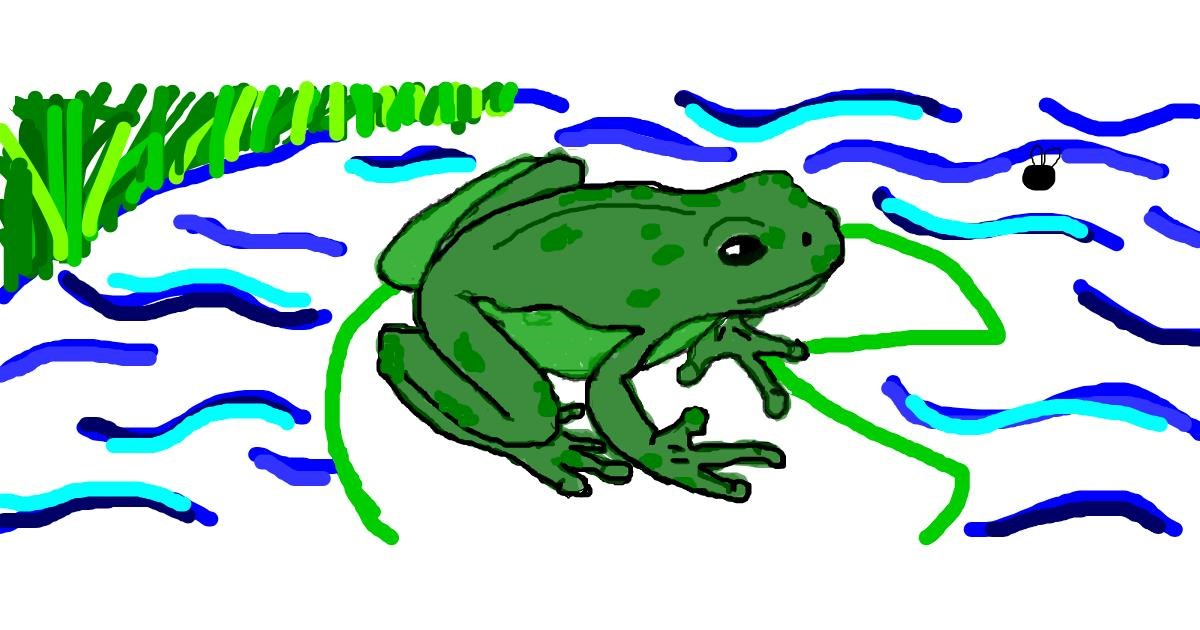 Drawing of Frog by Rosa
