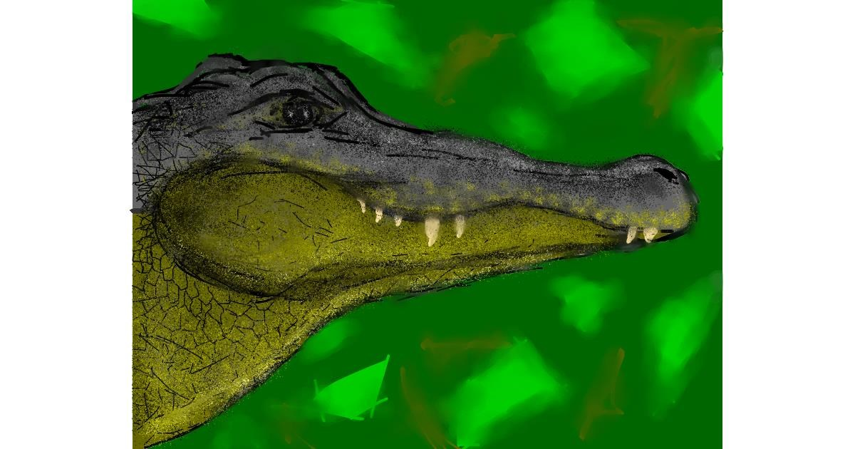 Alligator drawing by Malone