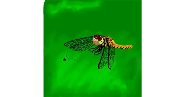 Dragonfly drawing by Korea