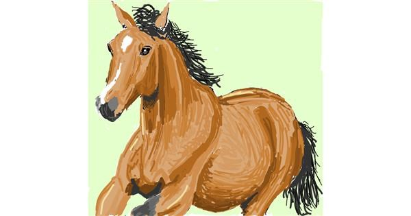 Horse drawing by Coyote