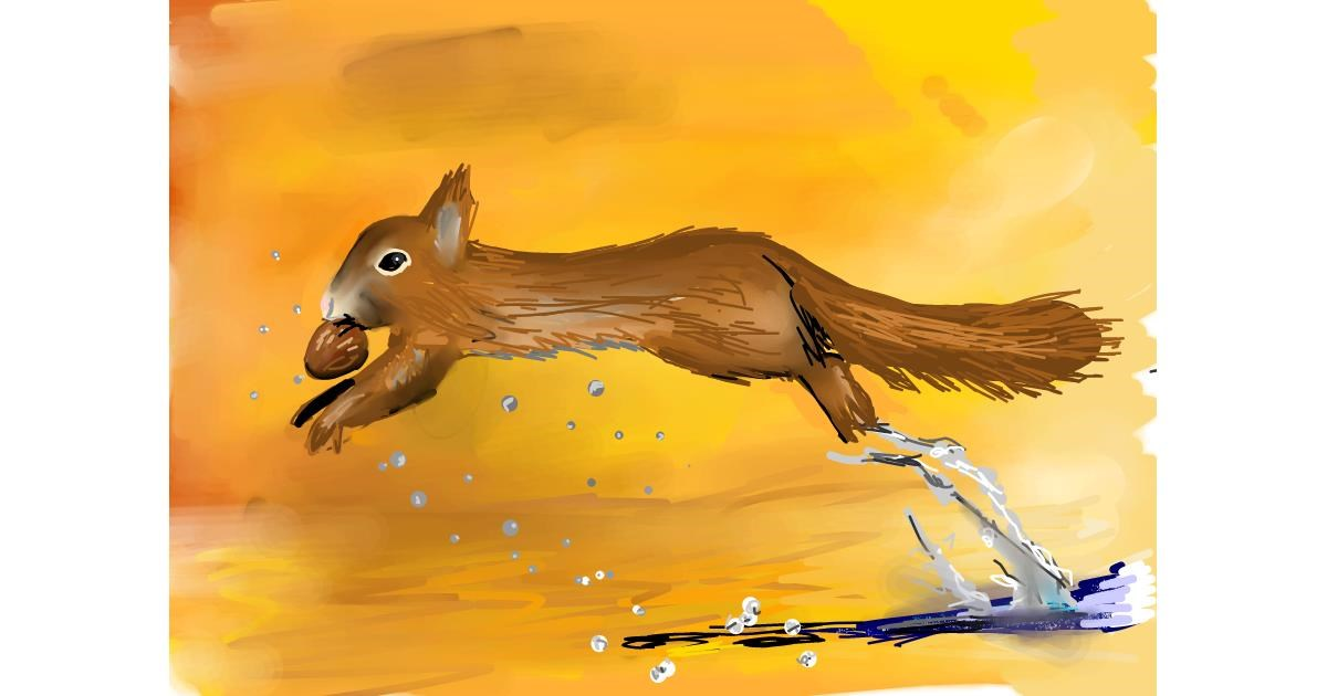 Squirrel drawing by Rose rocket