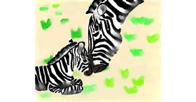Zebra drawing by Autumn
