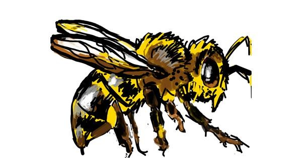 Bee drawing by MZ