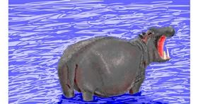 Hippo drawing by Sam