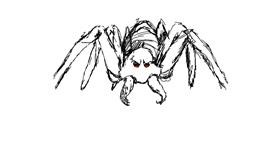 Spider drawing by pillar