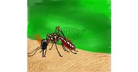 Mosquito drawing by Bri