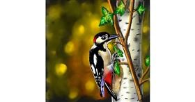 Drawing of Woodpecker by Leah