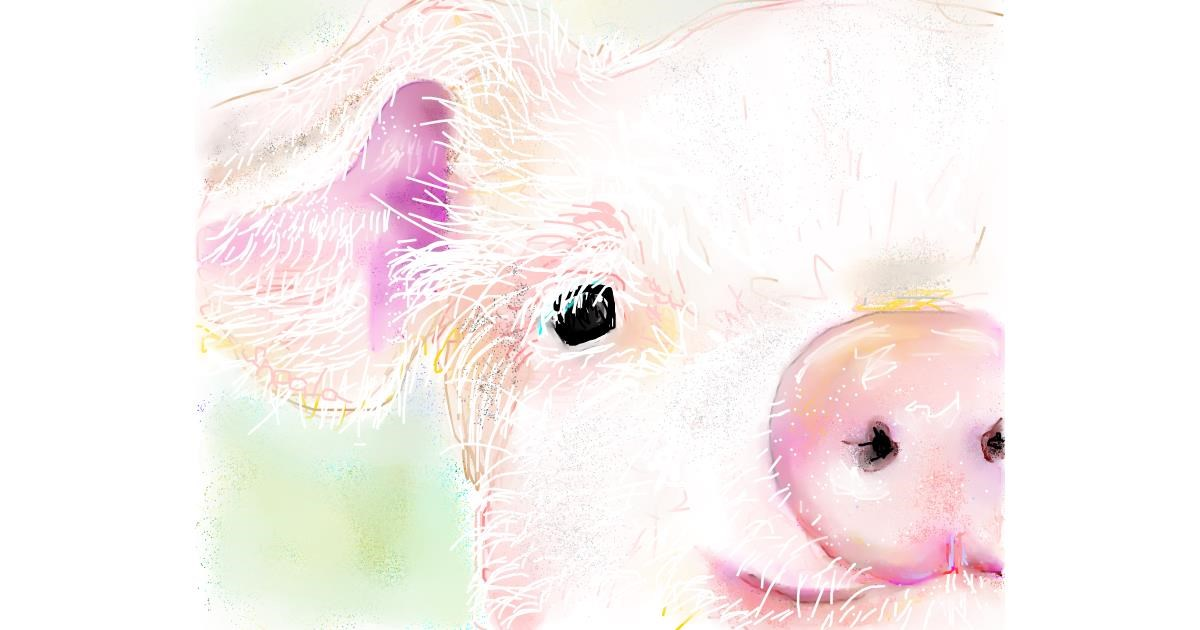 Pig drawing by Kai 🐾