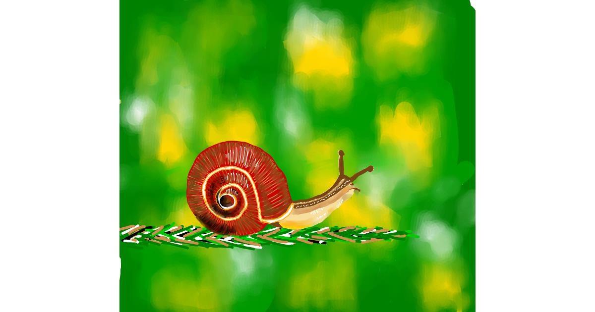 Snail drawing by Joze
