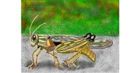 Grasshopper drawing by SAM AKA MARGARET 🙄