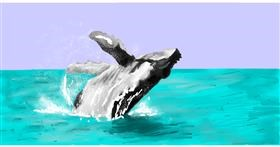 Drawing of Whale by Effulgent Emerald
