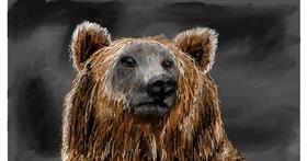Bear drawing by Soaring Sunshine