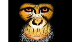 Drawing of Monkey by Wizard