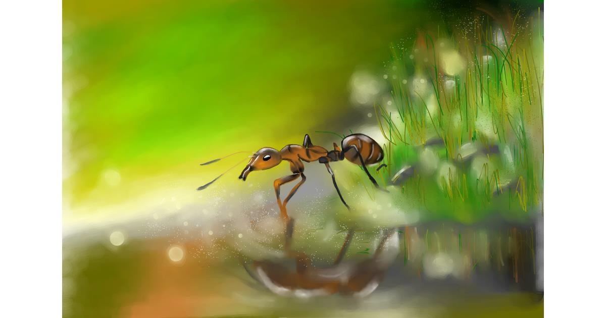 Ant drawing by RadiouChka