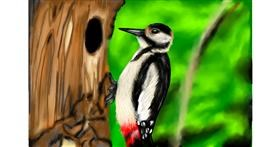 Drawing of Woodpecker by RadiouChka