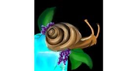 Snail drawing by Manali