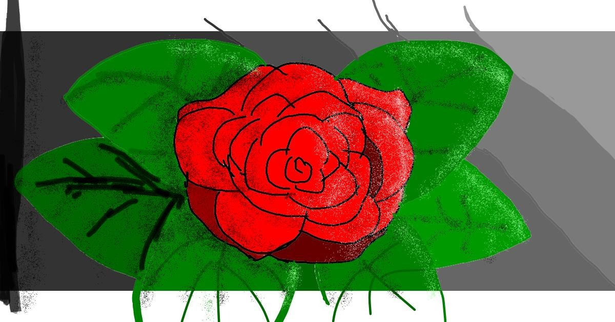 Rose drawing by Data