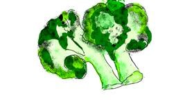 Broccoli drawing by Lsk