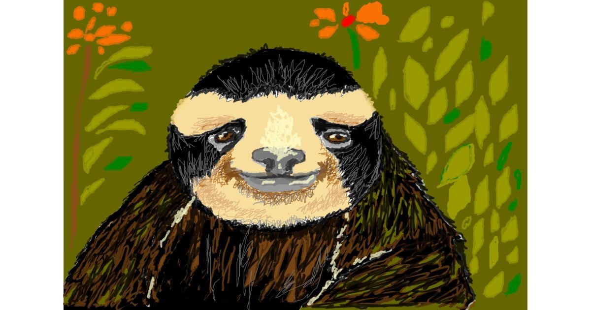 Sloth drawing by hahah