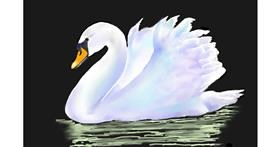 Swan drawing by GJP