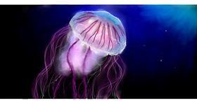 Jellyfish drawing by Todoroki-kun