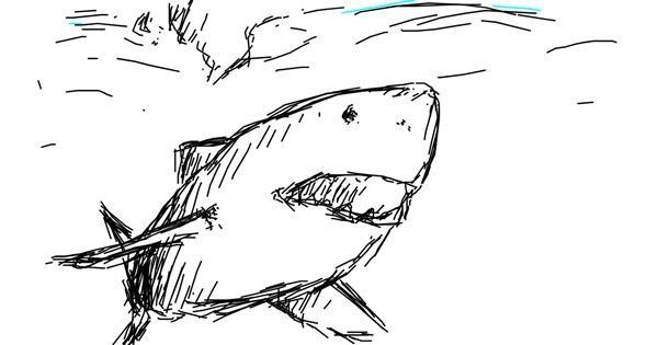 Shark drawing by Kreinax
