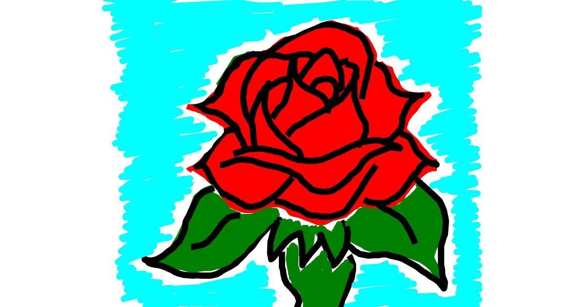 Rose drawing by Kamie