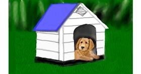 Dog house drawing by Tim