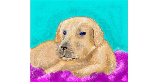 Dog drawing by Zz