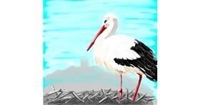Stork drawing by Coyote