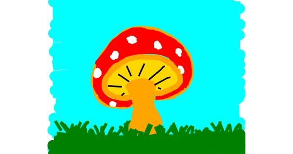 Mushroom drawing by Kamie