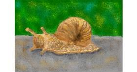 Snail drawing by Abbie