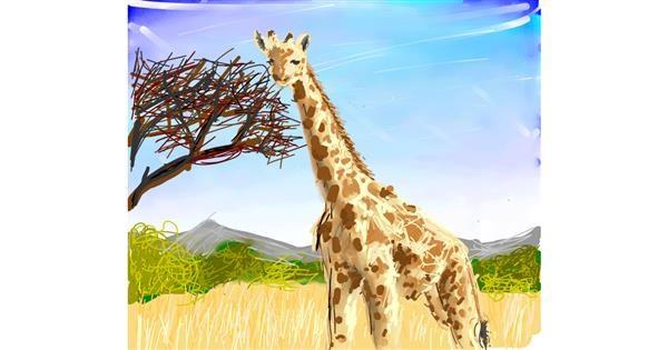 Giraffe drawing by Muni
