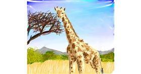 Drawing of Giraffe by Muni