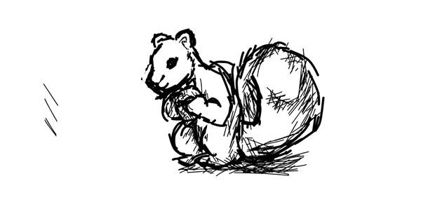 Squirrel drawing by Pixxwr