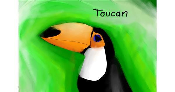 Toucan drawing by bon bon bunny