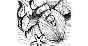 Seashell drawing by Britta
