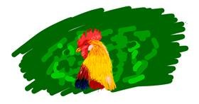 Chicken drawing by Nugget